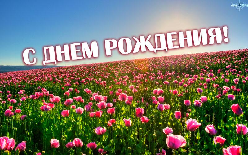 Красивые открытки с цветами поздравления с Днем Рождения женщине 11