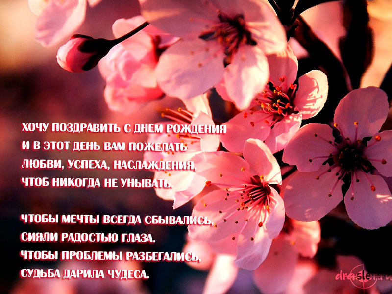 Красивые открытки с цветами поздравления с Днем Рождения женщине 15