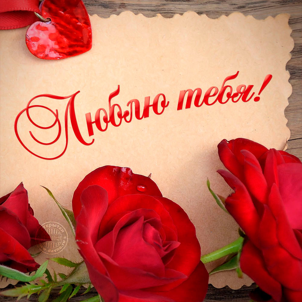 Люблю тебя моя девочка - красивые и милые картинки с надписью 12