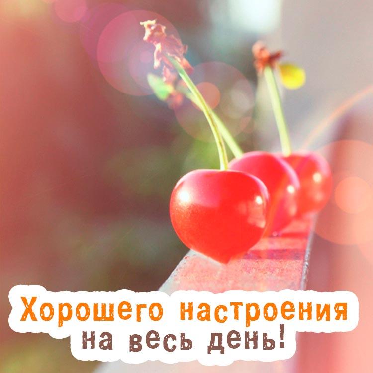 Красивые картинки хорошего утра и настроения - приятные открытки 6