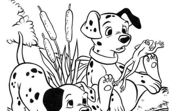 Красивые щенки раскраски для девочек и мальчиков - подборка 2
