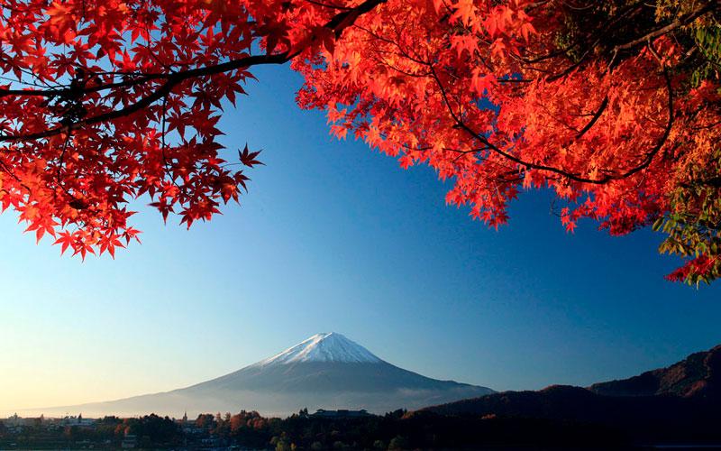 Удивительные и невероятные картинки красной осени - 20 фото 2