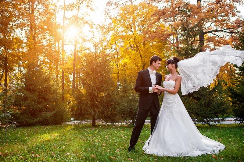 Свадебные картинки - очень красивые и милые, подборка 5