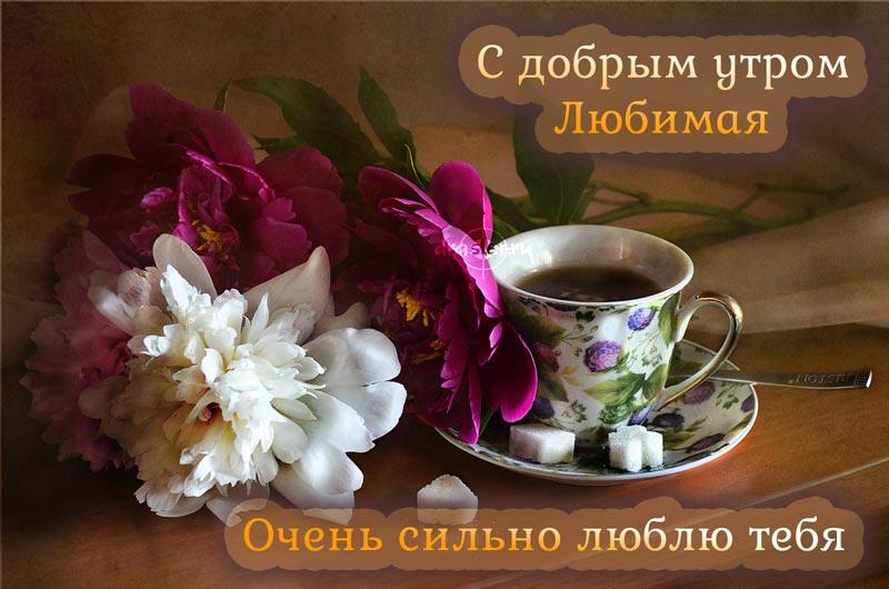 Красивые картинки с добрым утром для любимой - скачать бесплатно 5