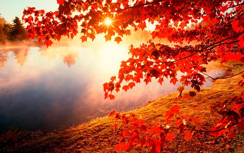 Удивительные и невероятные картинки красной осени - 20 фото 4