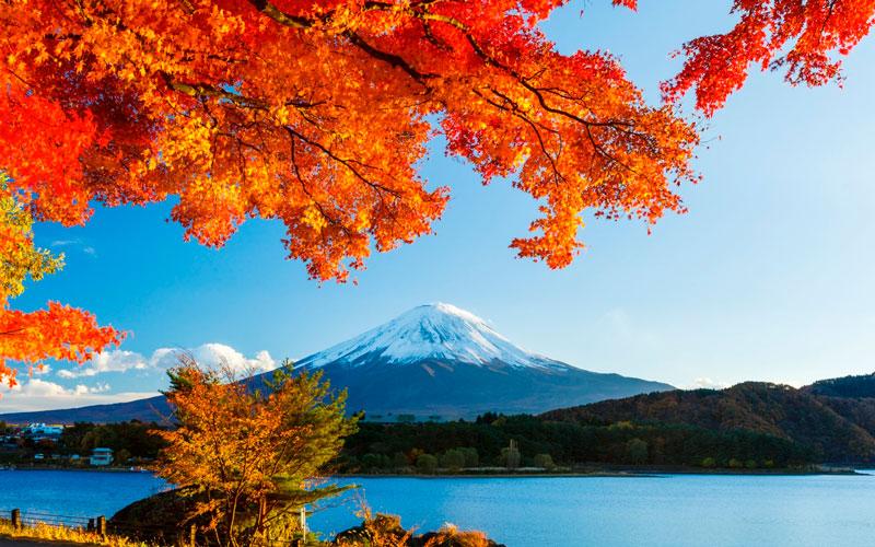 Удивительные и невероятные картинки красной осени - 20 фото 13