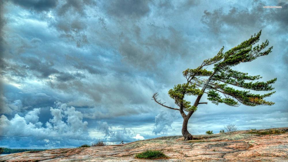 """Красивые и необычные картинки на тему """"Ветер"""" - подборка 5"""