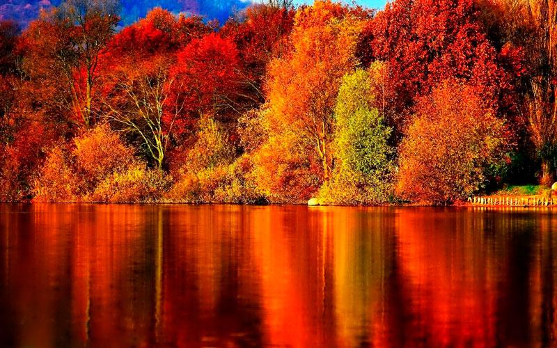Удивительные и невероятные картинки красной осени - 20 фото 10