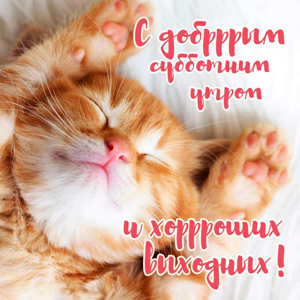 Красивые картинки хорошего утра и настроения - приятные открытки 13