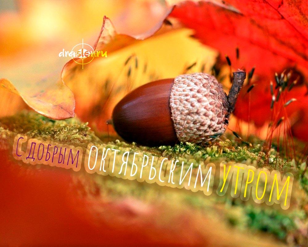 С добрым октябрьским утром - красивые открытки, картинки 12