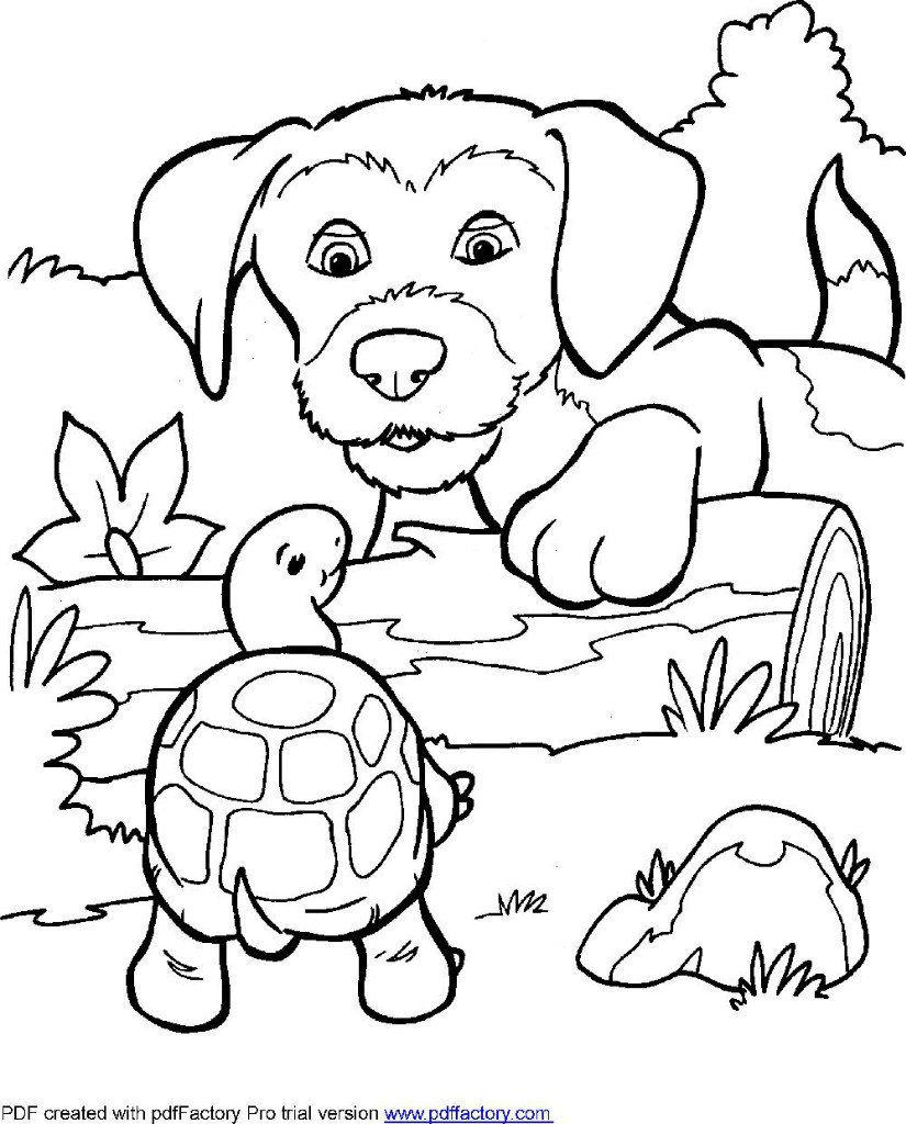 Красивые щенки раскраски для девочек и мальчиков - подборка 10