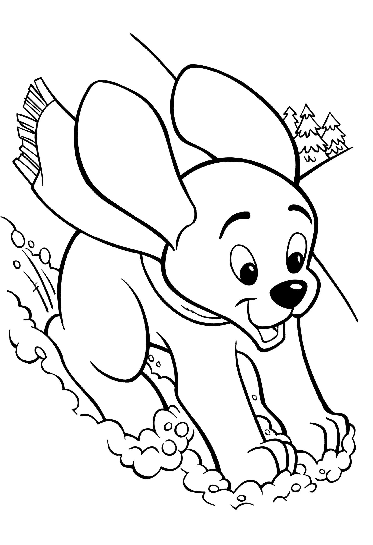 Красивые щенки раскраски для девочек и мальчиков - подборка 13