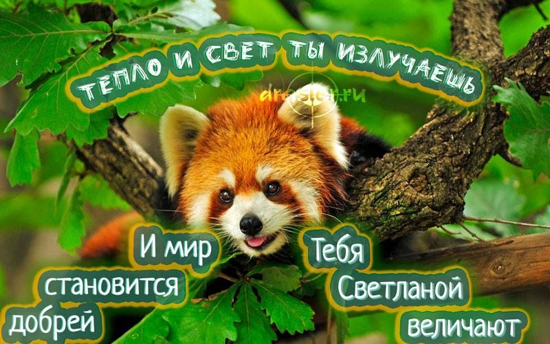 С Днем Рождения Светлана - красивые открытки 4
