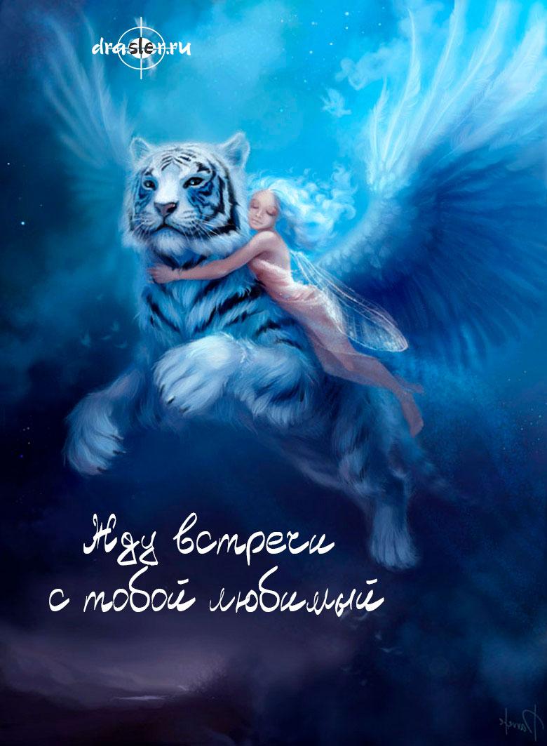 """Красивые картинки """"Жду встречи с тобой любимый"""" - подборка 1"""