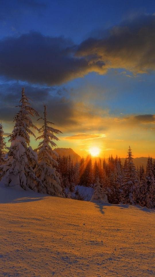 Новогодние картинки зимы 2019 на телефон на заставку 14
