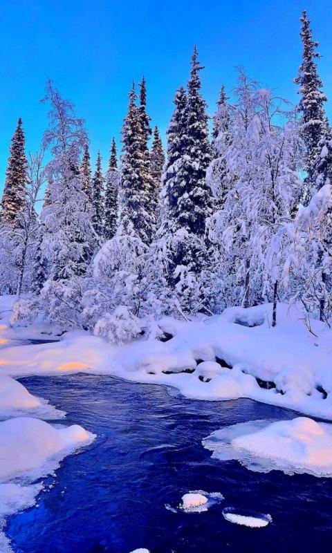 Новогодние картинки зимы 2019 на телефон на заставку 15