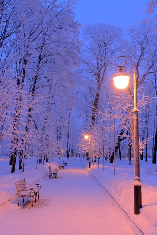 Новогодние картинки зимы 2019 на телефон на заставку 16