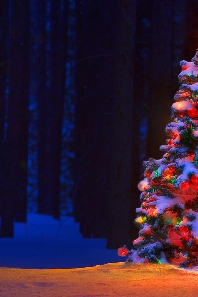 Новогодние картинки зимы 2019 на телефон на заставку 19