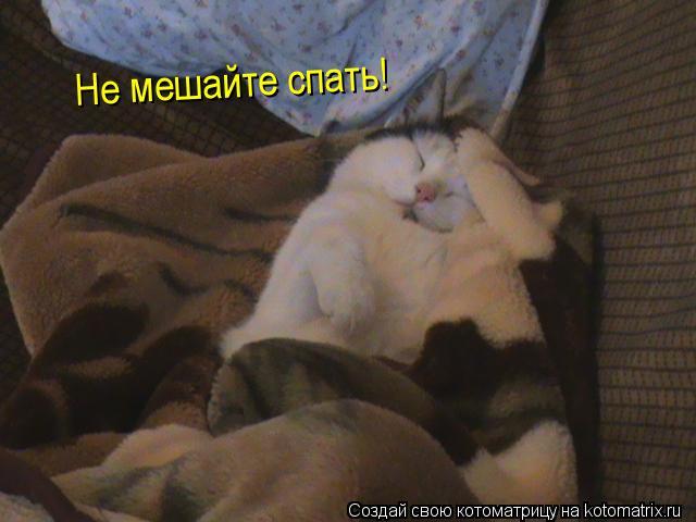 """Прикольные картинки, открытки """"Тихо, я сплю"""" с надписями 5"""