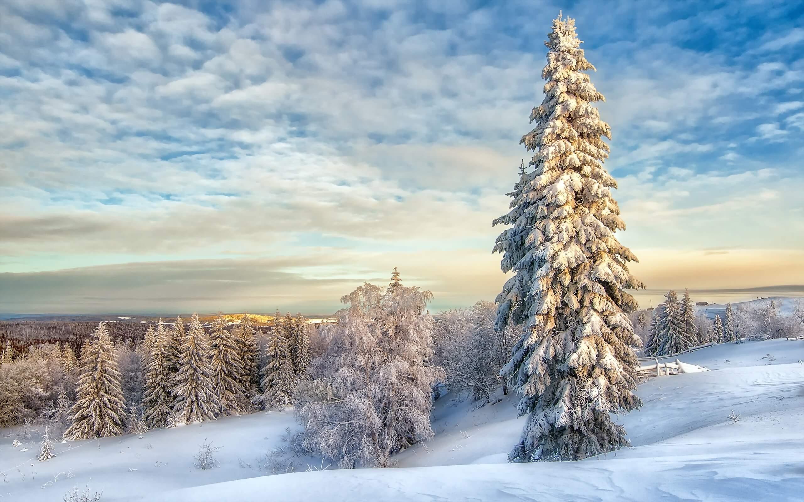 Красивые зимние картинки, пейзажи природы - подборка 25 штук 1