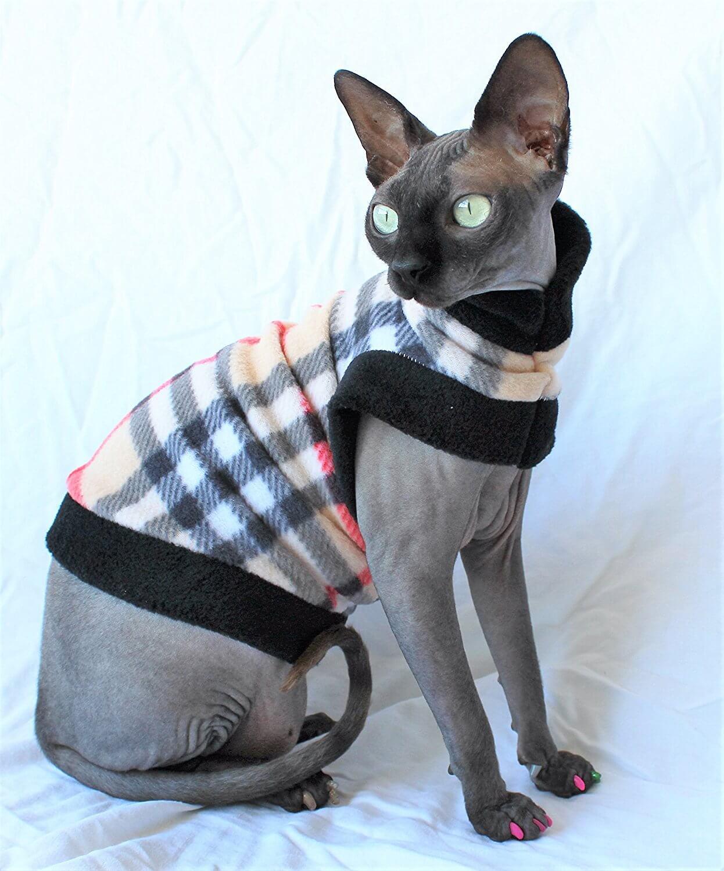 Прикольные и красивые картинки котов в одежде - сборка 1