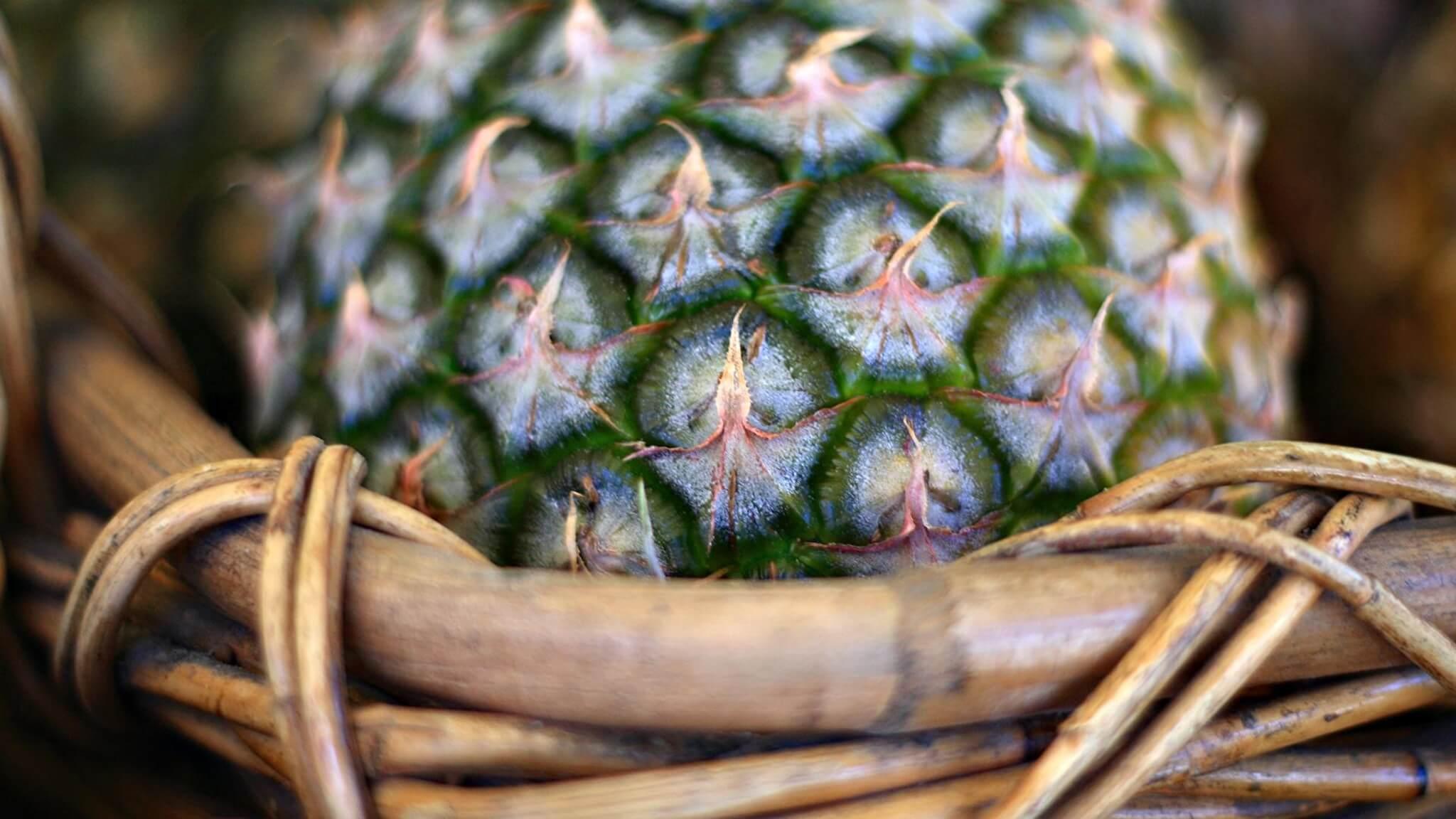 Красивые и прикольные картинки, обои ананаса - подборка 2018 5