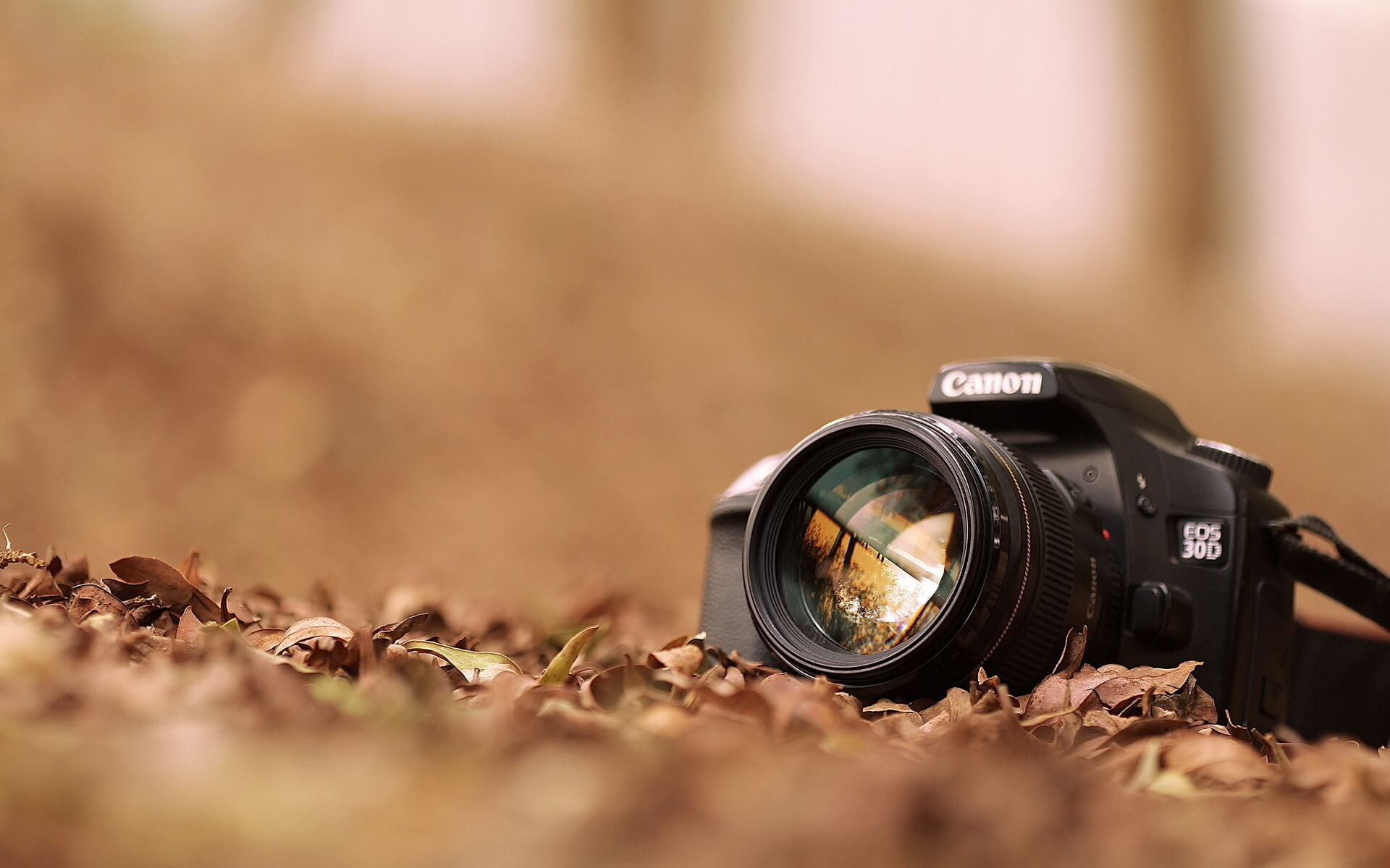 """Красивые картинки и обои """"Камера"""" - подборка изображений 7"""