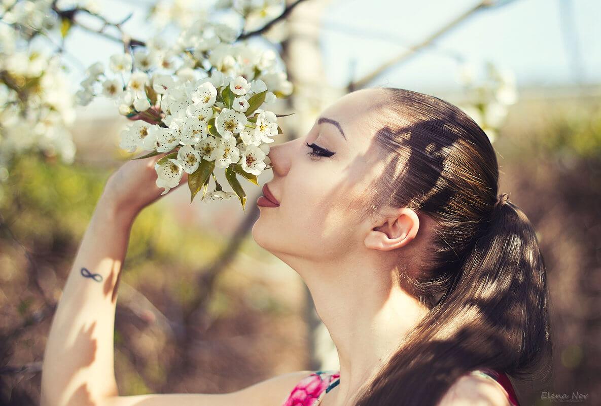 """Красивые картинки и фото """"Аромат весны"""" - подборка 9"""