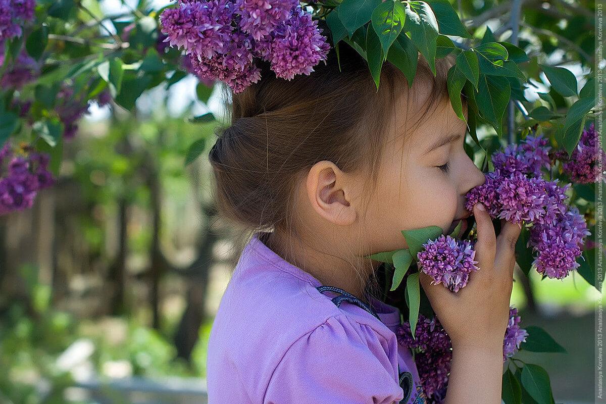 """Красивые картинки и фото """"Аромат весны"""" - подборка 7"""