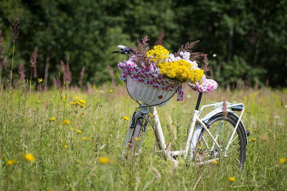 """Красивые картинки и фотографии """"Корзина цветов"""" - подборка 2"""