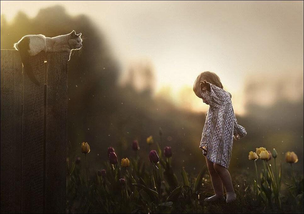 Красивые и приятные картинки для души и настроения - подборка 12