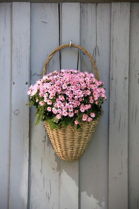 """Красивые картинки и фотографии """"Корзина цветов"""" - подборка 4"""