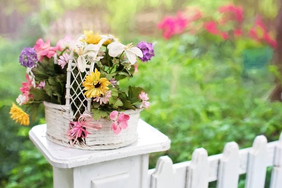 """Красивые картинки и фотографии """"Корзина цветов"""" - подборка 5"""