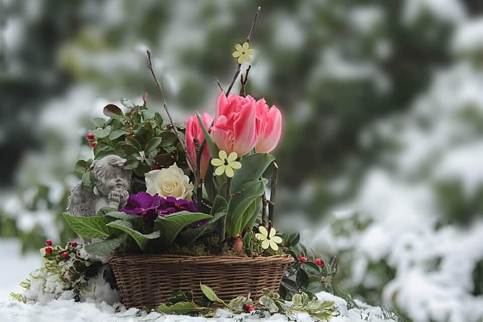 """Красивые картинки и фотографии """"Корзина цветов"""" - подборка 11"""