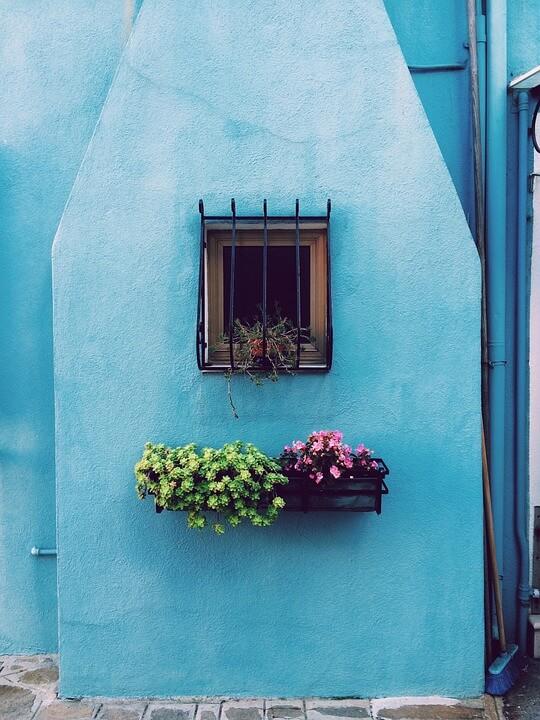 """Красивые картинки и фотографии """"Корзина цветов"""" - подборка 7"""