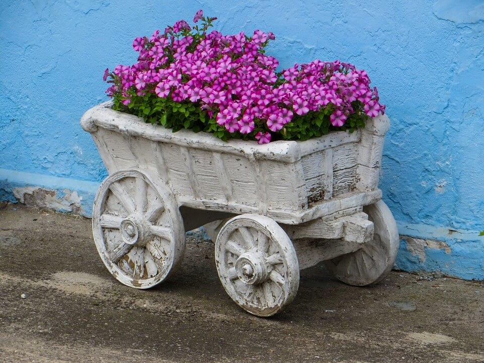 """Красивые картинки и фотографии """"Корзина цветов"""" - подборка 8"""