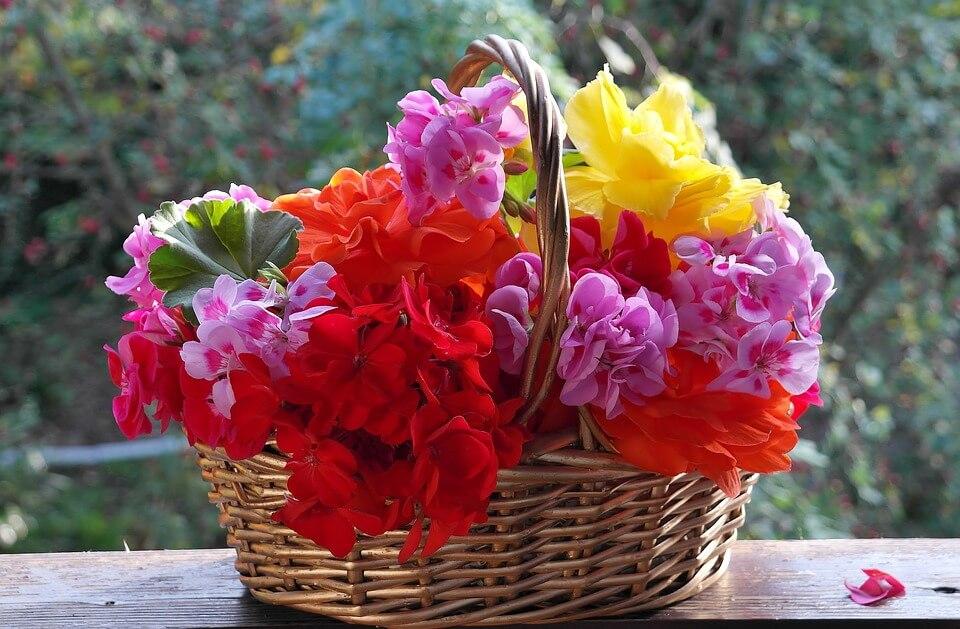 """Красивые картинки и фотографии """"Корзина цветов"""" - подборка 12"""