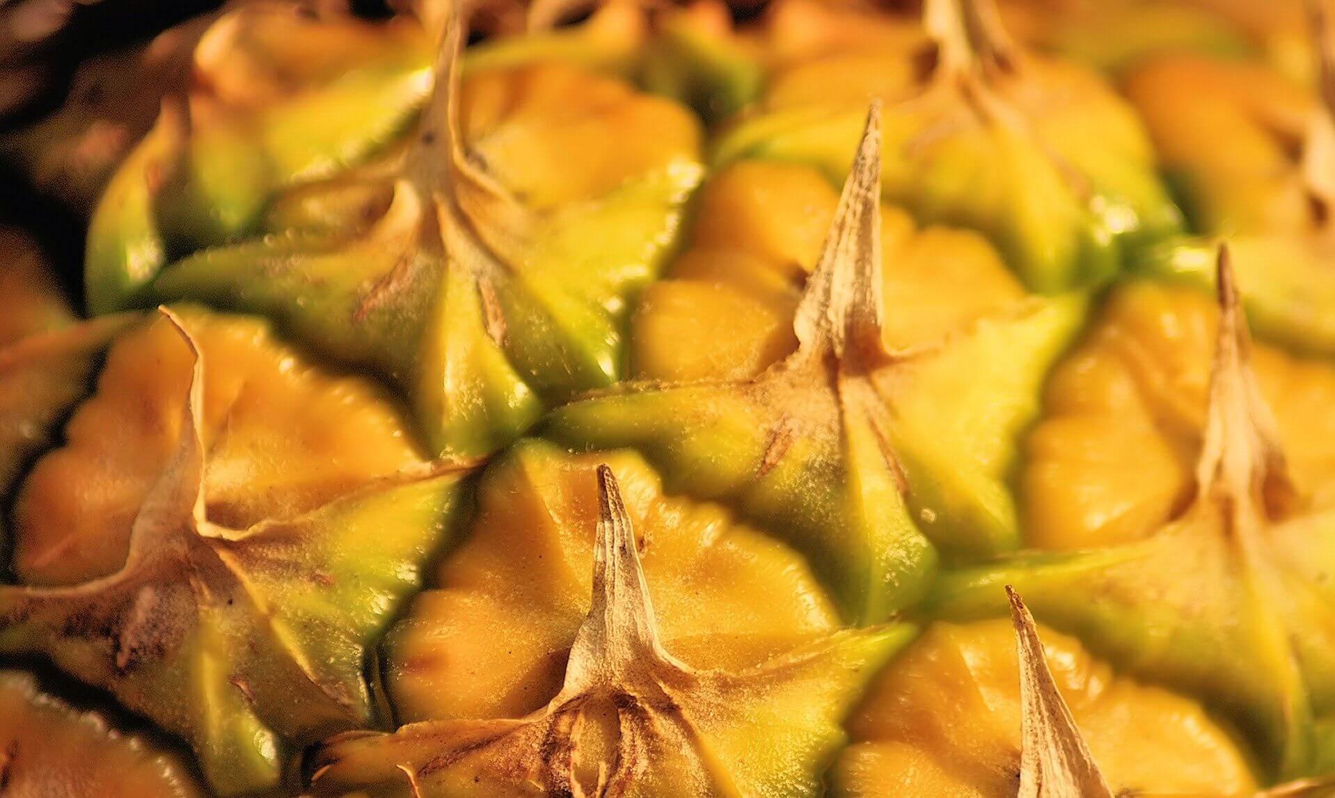 Красивые и прикольные картинки, обои ананаса - подборка 2018 14
