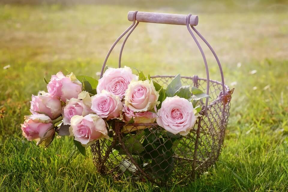 """Красивые картинки и фотографии """"Корзина цветов"""" - подборка 17"""