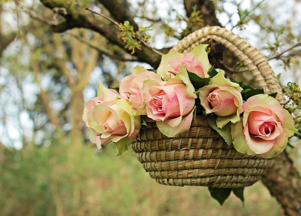 """Красивые картинки и фотографии """"Корзина цветов"""" - подборка 19"""