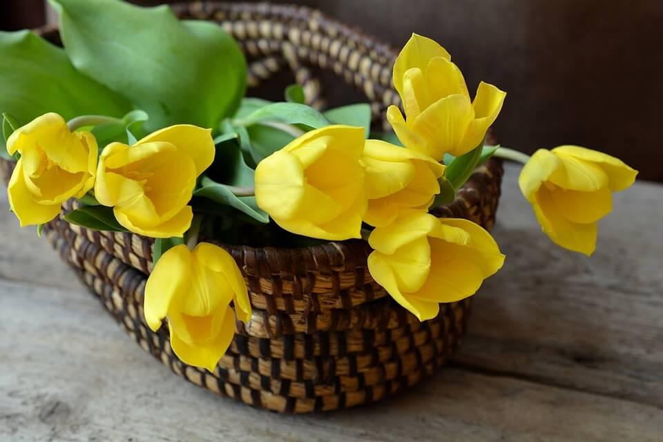 """Красивые картинки и фотографии """"Корзина цветов"""" - подборка 23"""