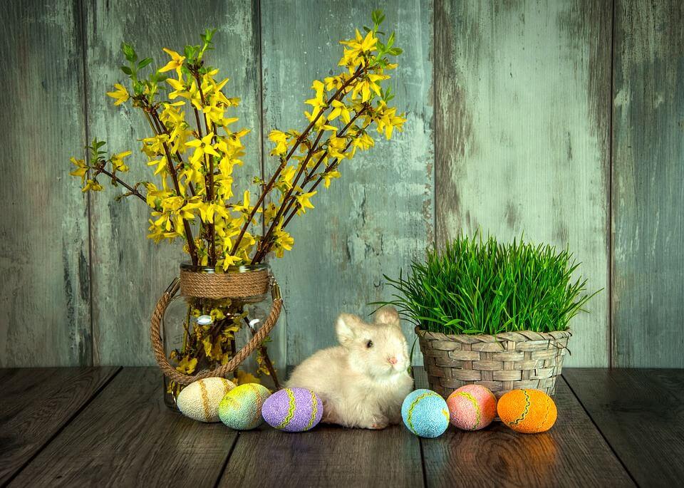 """Красивые картинки и фотографии """"Корзина цветов"""" - подборка 24"""