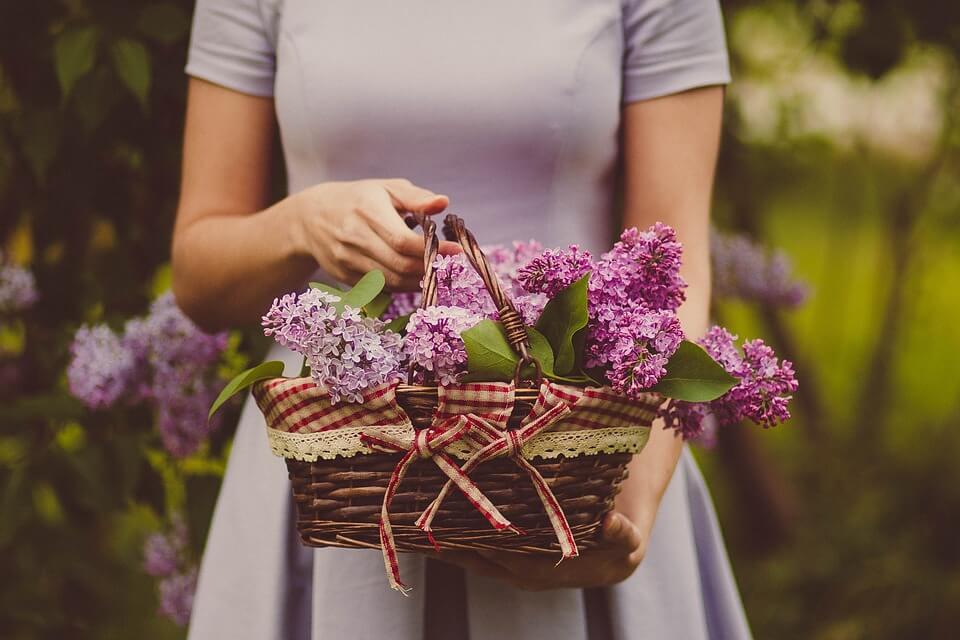 """Красивые картинки и фотографии """"Корзина цветов"""" - подборка 25"""