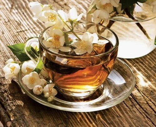 Жасминовый чай - польза и особенности употребления 1