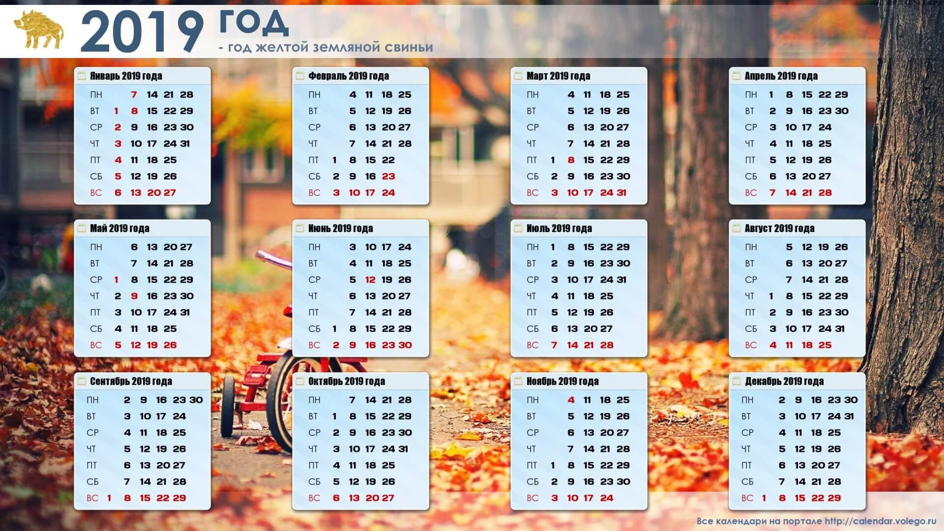 Красивые календари на 2019 год - отличная подборка 16