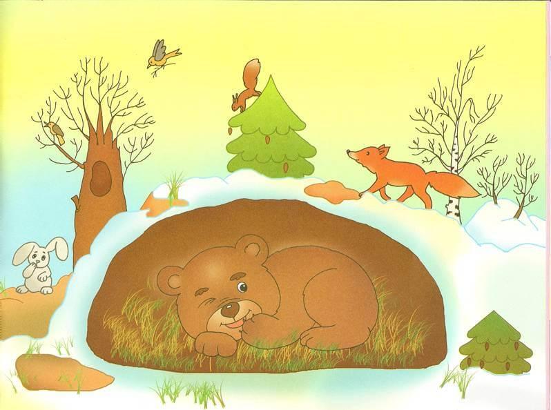 Медведь красивые и прикольные картинки для детей - сборка 1