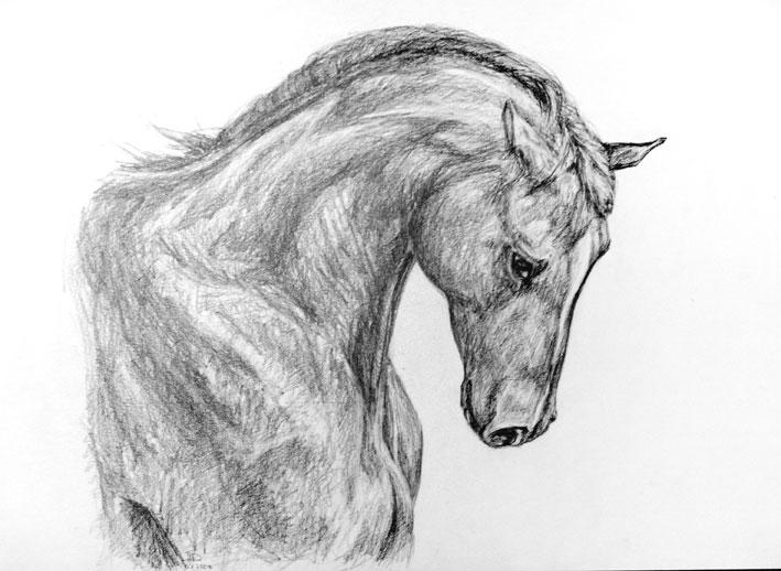 Красивые картинки для срисовки карандашом в блокнот 1