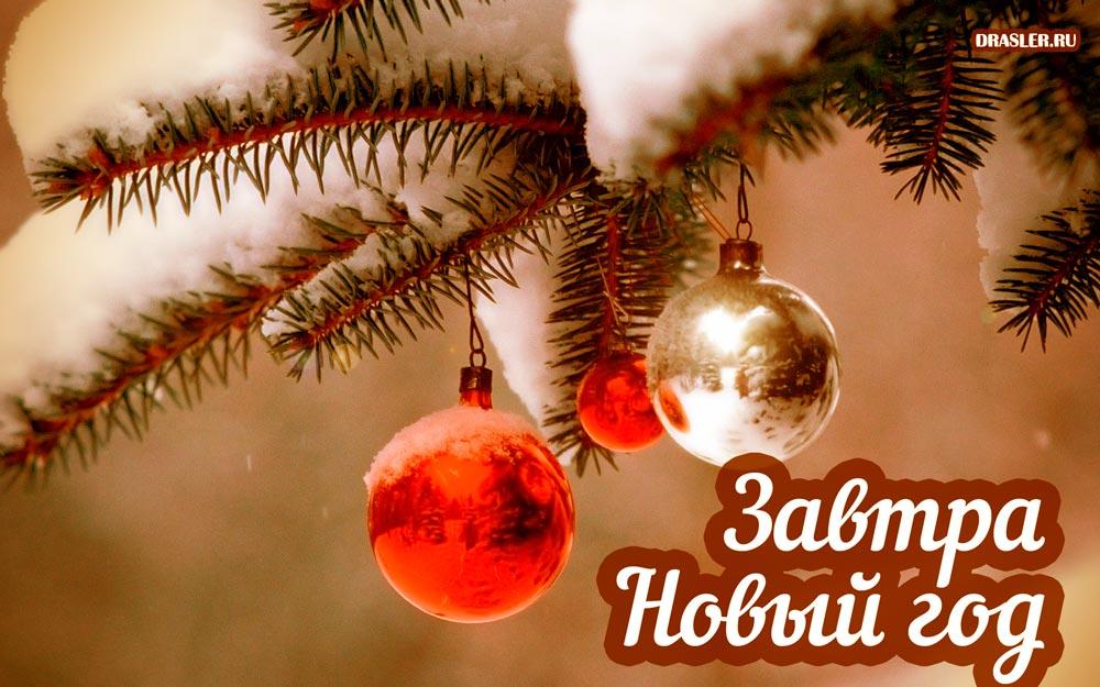 Прикольные картинки А завтра Новый год! - скачать бесплатно 4