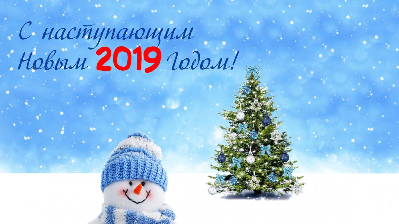 Картинки и открытки поздравления с Новым годом свиньи 2019 4