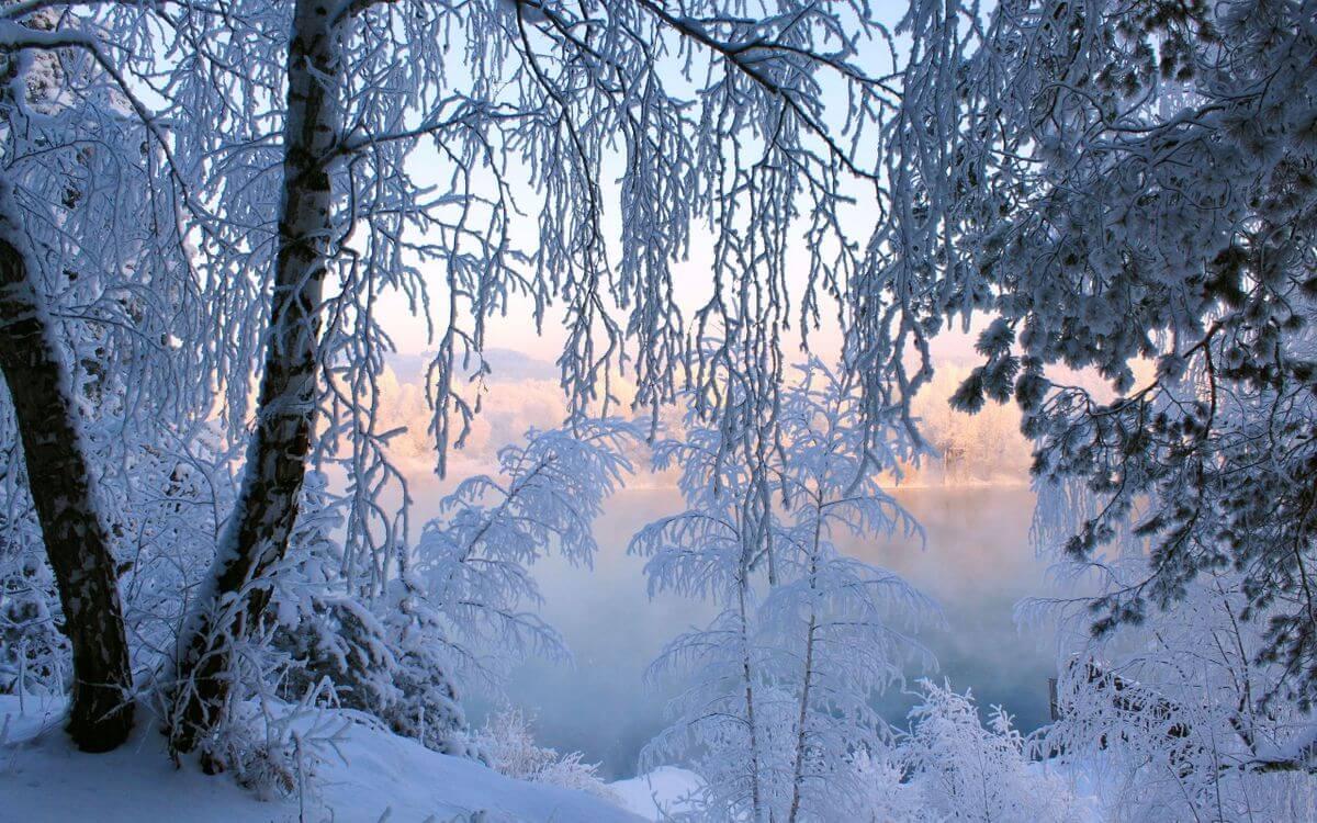 Скачать обои зимних картинок на телефон для заставки 2